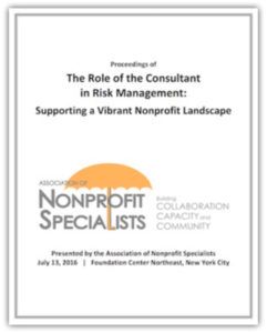 consultants-role-risk-management-report